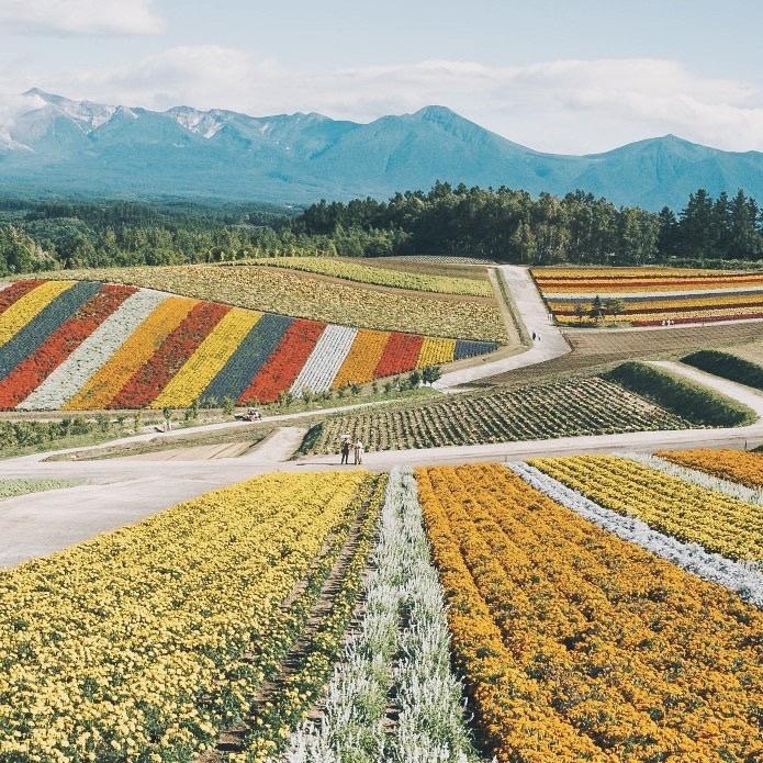 北海道に関連する記事についてるタグ