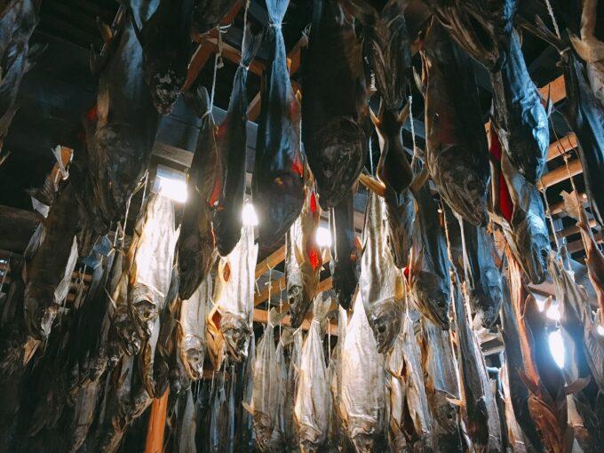 新潟 村上 塩引き鮭