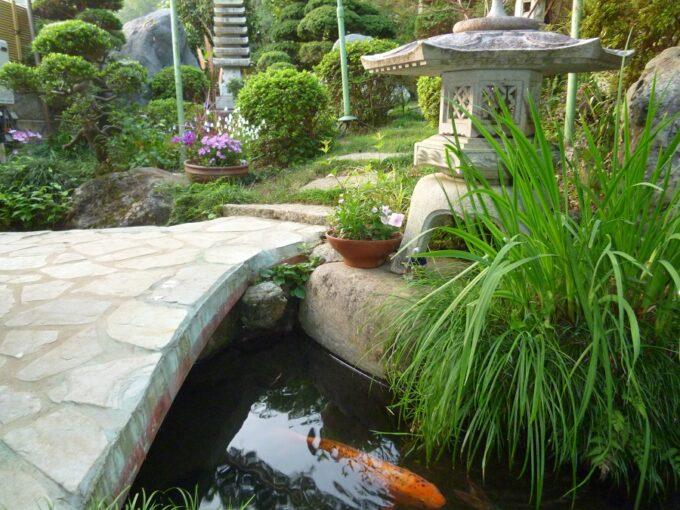 大月ロハス村雲水舎のお庭
